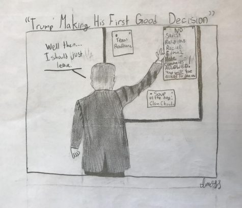 Student Political Cartoon